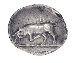 greek coins - fauna and flora ancient coins